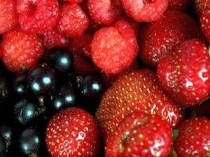 Ягоди з нашого городу: чи можна вагітним малину, полуницю, калину і смородину